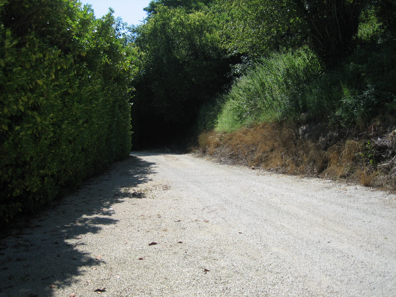 dordognes2006189.jpg